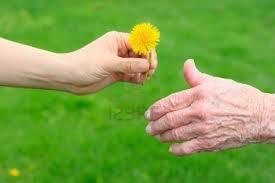 giving a flower hands