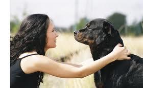 dog woman staring eyes