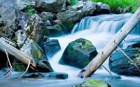waterfalltreesboulder